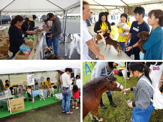 新潟県動物愛護フェスティバル