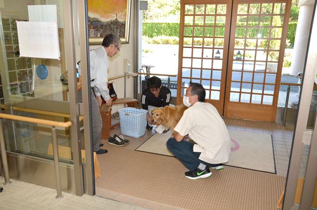 岐阜県動物愛護センター 動物介在活動犬育成・譲渡事業
