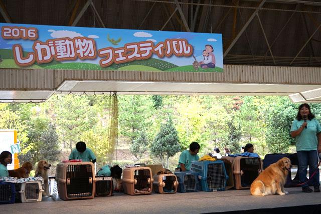 しが動物フェスティバルを開催