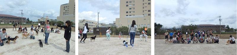 島根県の動物愛護フェスティバル
