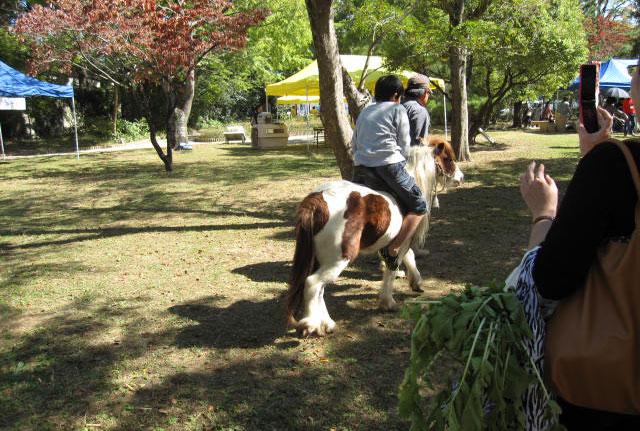 高知県動物愛護のつどい