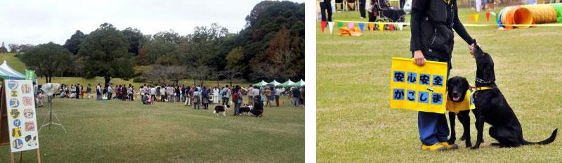 鹿児島市動物愛護フェスティバル